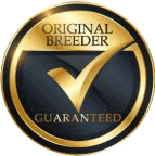 badge of guarantee