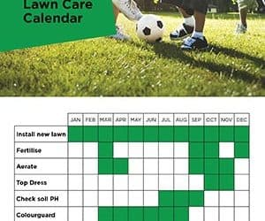 Lawn Care Maintenance Calendar