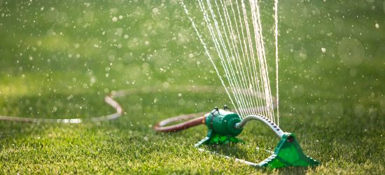 Water restrictions with a new lawn. Can you lay turf in a drought?